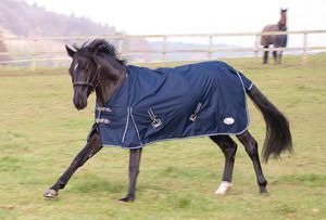 Rhinegold Torrent Lightweight Turnout Rug (no fill)