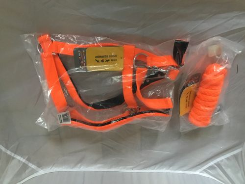 HKM 'Stars Softice' Headcollar & Lead - Neon Orange - CURRENTLY SOLD OUT