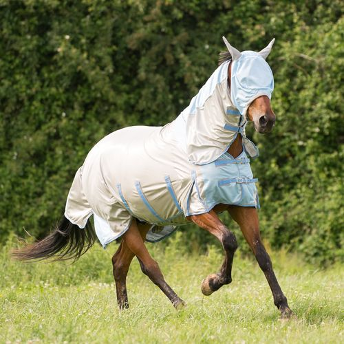 Gallop All in One Fly Rug with FREE Mask - All Sizes